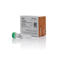 NuPAGE™ Sample Reducing Agent (10X)